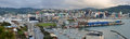Wellington city panorama in early morning new zealand from oriental bay Stock Photography