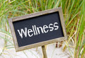 Wellness sign word written on blackboard or chalkboard with sand dune and grass in background Royalty Free Stock Photography