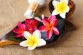 Wellness spa aromatherapy concept Stock Afbeeldingen