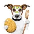 Wellness Spa Wash Sponge Dog