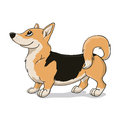 Welsh Corgi with black back Royalty Free Stock Photos