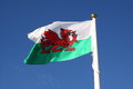 Welsh flag Royalty Free Stock Photo