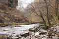 Welsh river after many months of rain over winter the landscape in the valleys is sodden and the rivers are full and flowing fast Royalty Free Stock Images