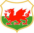Welsh wales red dragon shield Stock Photos