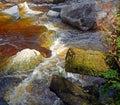 West coast new zealand karamea limestone arch river oparar closeup of the oparara near note the amazing golden brown tea colour of Stock Photo