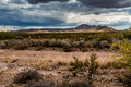 West texas landscape of desert area with hills far clouds and plants Stock Image