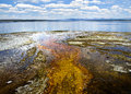 West thumb geyser basin in yellowstone national park looking over yellowstone lake Stock Images