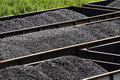 West virginia coal in railroad hopper cars three rows of railway full from the nearby mines and processing plants sitting a rail Royalty Free Stock Photography