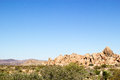 Western desert landscape with green brush in the foreground and rock formations and mountains in the background Royalty Free Stock Photo