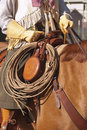 Western saddle and gear Stock Images