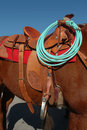 Western Saddle and Rope Royalty Free Stock Photo