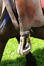 Western stirrup close-up Royalty Free Stock Image