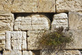 The western wall of the Jerusalem temple Stock Photo