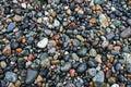 Wet beach rocks Royalty Free Stock Photo