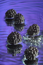 Wet Blackberry #2 Royalty Free Stock Photo
