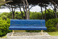 Wet blue bench in a park Royalty Free Stock Photo
