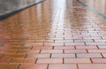 Wet brown pavement. Royalty Free Stock Photo