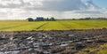 Wet field in the autumn season Royalty Free Stock Photo