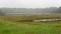 Wet open dutch landscape Royalty Free Stock Photo