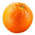 Wet orange fruit isolated on white clipping path Royalty Free Stock Photo