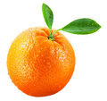 Wet orange fruit with leaves isolated on white Royalty Free Stock Images
