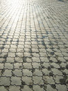 Wet ornate paving stones Royalty Free Stock Image