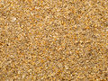 Wet quartz sea sand  texture Royalty Free Stock Photo