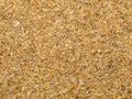 Wet quartz sea sand  texture Royalty Free Stock Photo