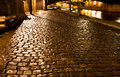 Wet quay in paris at night cobblestone paved Stock Photography
