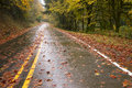 Wet rainy autumn day leaves fall two lane highway travel the road is slick and during rain Royalty Free Stock Images