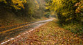 Wet rainy autumn day leaves fall two lane highway travel the road is slick and during rain Stock Image