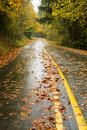 Wet rainy autumn day leaves fall two lane highway travel on the road in the woods Stock Image