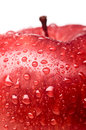 Wet red delicious apple Royalty Free Stock Image