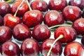 Wet ripe fresh cherries isolated on white background. Royalty Free Stock Photo