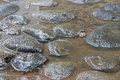 Wet rocks background stone after rain Stock Photography