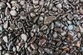 Wet Rocks Royalty Free Stock Photo