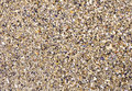 Wet sand with crushed sea shells in sunny day Stock Images