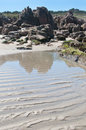 Wet sand ripples on the beach Royalty Free Stock Photo