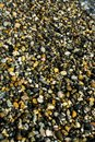 Wet sea pebbles on beach Royalty Free Stock Photo