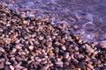 Wet sea pebbles on the sea beach Royalty Free Stock Photo
