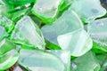 Wet Shards of Flat Green Beach Glass Royalty Free Stock Photo