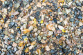 Wet small rocks and fallen leaves for backgrounds plenty of wallpaper captured in high angle view Stock Photos