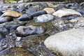 Wet stones after the rain. Royalty Free Stock Photo