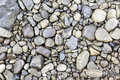 Wet stones in a river Royalty Free Stock Photo