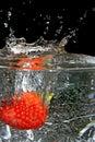 Wet strawberries. Royalty Free Stock Photo