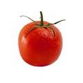 Wet tomato Royalty Free Stock Photo