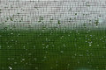Wet Window Screen