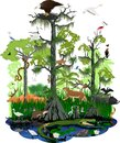 Wetland or Florida Everglades landscape with different wetland animals Royalty Free Stock Photo