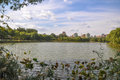 Wetland nature park Royalty Free Stock Photo