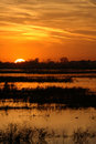 Wetland Sunset Royalty Free Stock Photography